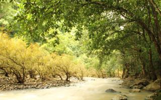 Balaong River