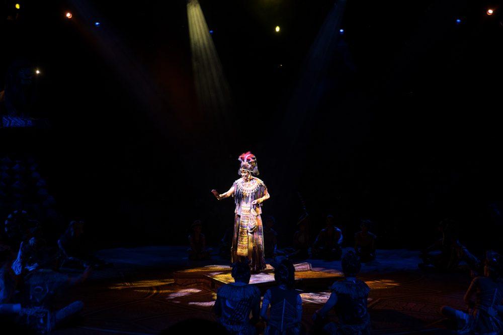 Disneyland Hongkong Lion King